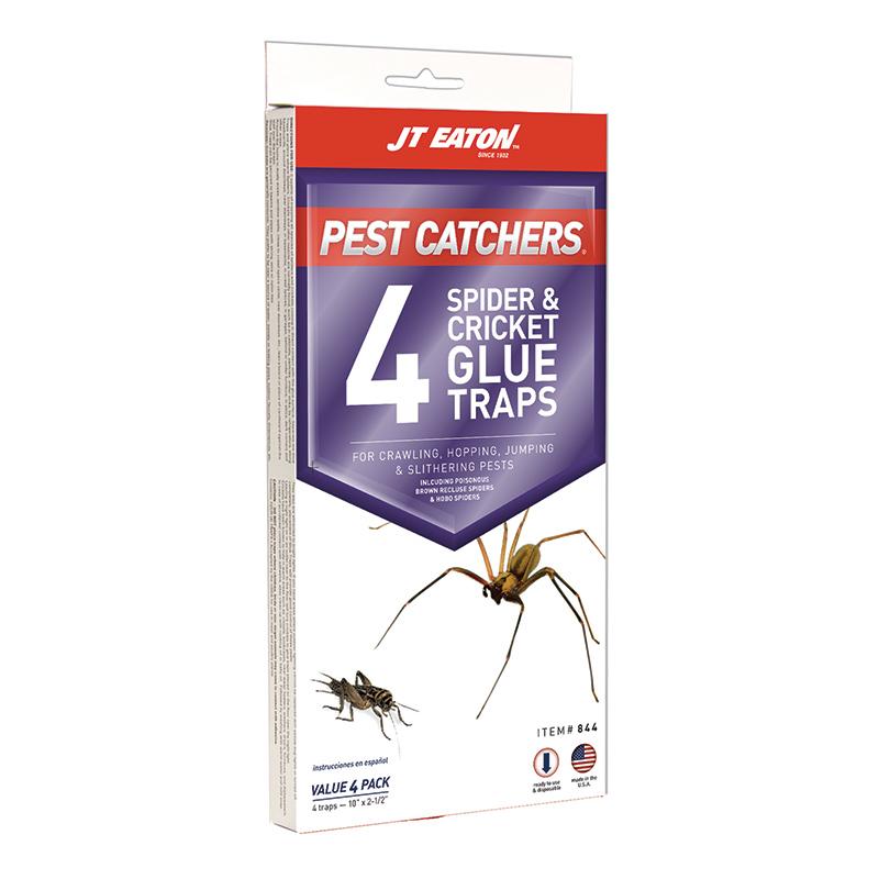 Pest Catchers 174 Large Spider Amp Cricket Glue Trap J T Eaton